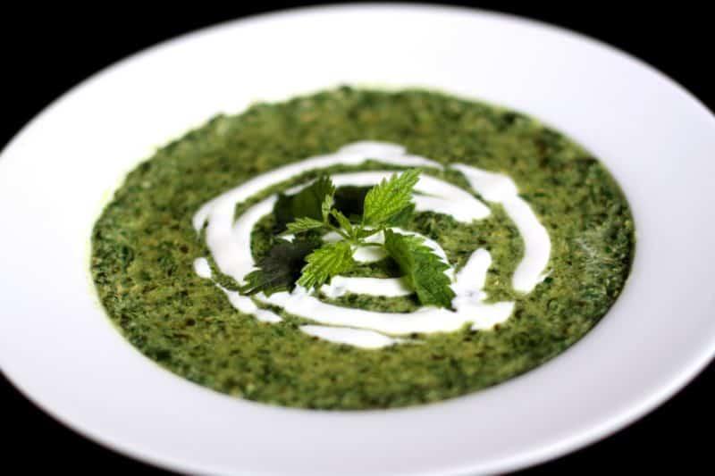 Весенний суп из свежей зелени: Суп из Крапивы и Щавеля 1