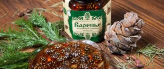 Варенье из сосновых шишек: мега полезное варенья на зиму 1
