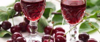 Домашнее вино из вишни: вам будет чем порадовать гостей 9
