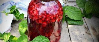 Компот из малины на зиму: очень вкусный и полезный компот 5