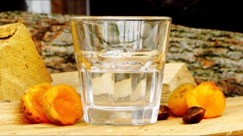 Самогон из абрикосов: ароматный домашний самогон из абрикосов 1