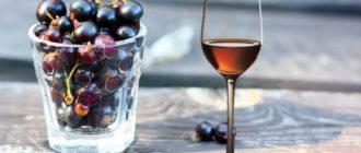 Самогон на смородине: приятный на вкус, обладающий лечебными свойствами напиток 1