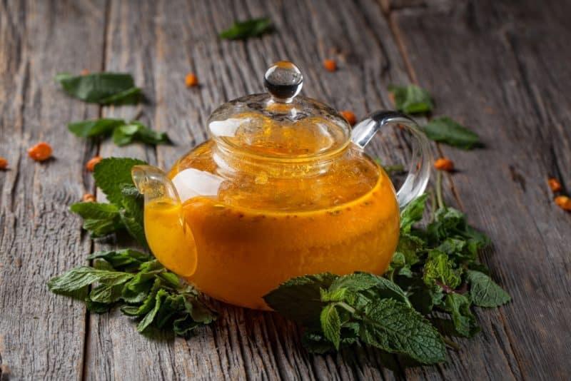 Облепиховый чай: ароматный, вкусный и очень полезный напиток 1