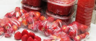 Свежая клубника на зиму. Едим ароматную ягоду всю зиму 10