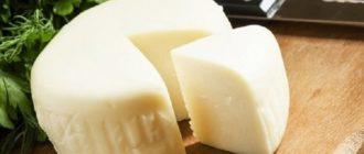 Сулугуни быстрого приготовления. Сыр получается очень нежным и готовить его сплошное удовольствие 12
